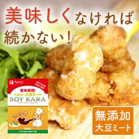 ヘルシー大豆ミート ソイカラ