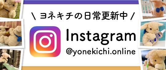 ヨネキチ公式instagram